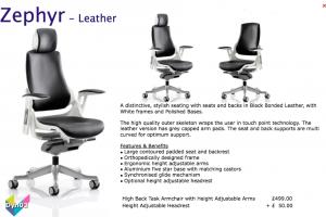 Dynamic Zephyr Leather Armchair